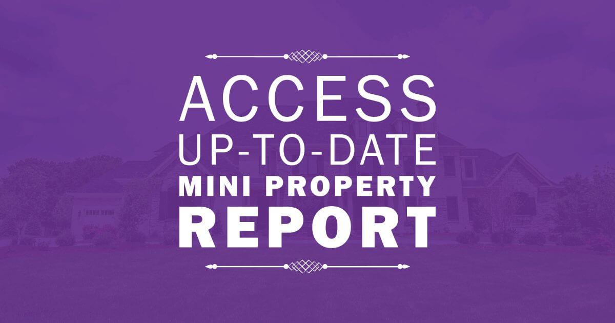 Mini Property Report