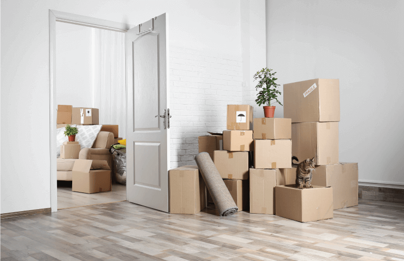 Career Move & Real Estate